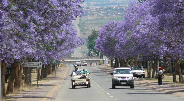south africa travel in 2021