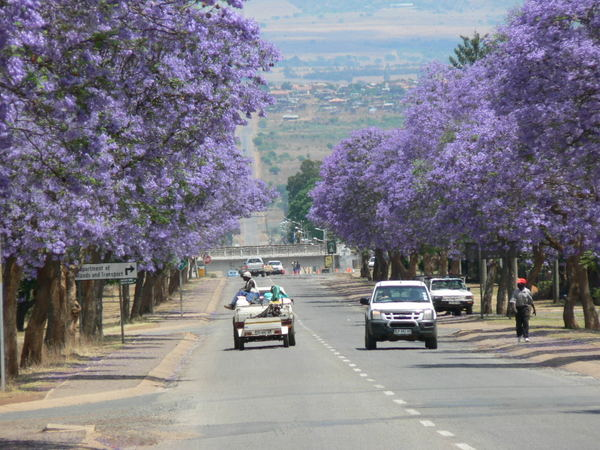 Coming to Southern Africa in 2020? You'll Want to Book These Tours