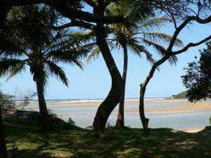 self-drive garden route and wild coast