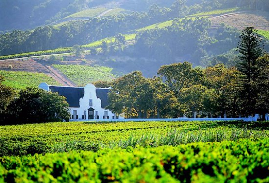 Winelands day tour - Cape Town