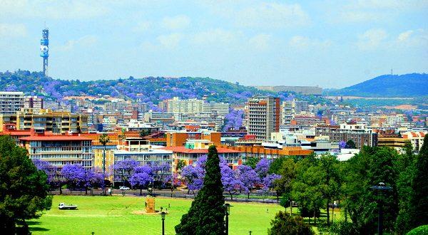 Jacaranda-City