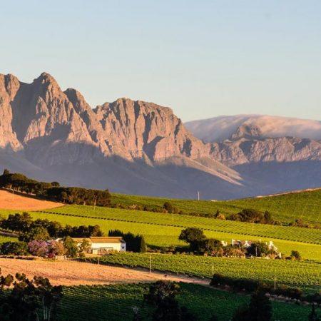 Cape Winelands day tour