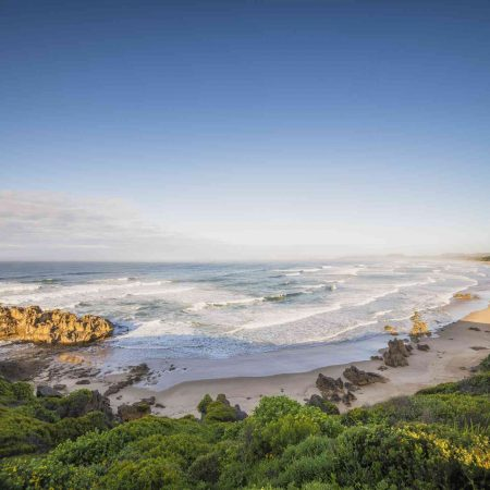 wild coast and garden route