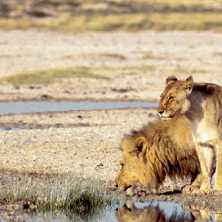 9 Day Namibian Tour